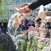 【炎上】犬鳴山の「金魚の放流」イベントに批判殺到しまくった結果www(画像あり)