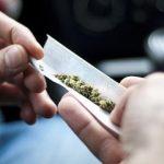 【怖い】長野・限界集落の大麻事件で男女22人逮捕!!ヤバすぎるコミュニティーを形成していた!!?