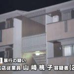 【さいたま殺人事件】山崎桃子(22)が交際相手(21)をフルボッコ殺害して逮捕…どんな女だよ…