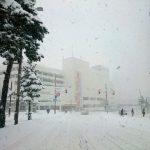 【訃報】札幌、死亡のお知らせ…シャレにならん…(画像あり)