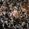 相撲客が照ノ富士にブーイング「モンゴル人は祖国に帰れ!」法務省「それ逮捕案件だから。マジで」
