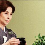【訃報】野際陽子さん死去…死因がこちら…(画像あり)