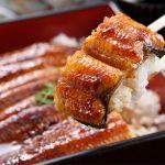 イギリス人、日本のうなぎ料理に呆れてしまう…(海外の反応)