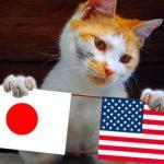 【海外の反応】アメリカ人、日本の若者に苦言wwwwwwwww