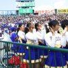 【甲子園】秀岳館のチアガールが有村架純似で可愛すぎると話題wwwww(※画像あり)
