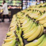 【新パナマ病】バナナ終了のお知らせ…今のうちに買い占めとけよ…