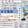 【衝撃】中国人が偽造免許を使って日本の米軍基地で働いた結果wwwwww