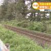 【新潟線路殺人事件】小2女児・大桃珠生さん(7)の司法解剖の結果…(顔画像あり)