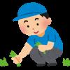 【急募】この庭の草むしりで日給1万円wwwお前らやってみろwwwww(画像あり)