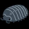 【悲報】ダンゴムシが家に出没した結果・・・