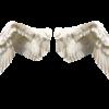 【衝撃画像】ワイ将、背中にガチの翼が生え始めるwwwww(画像あり)