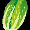 【驚愕】去年高級品だった白菜さんの現在wwwww(画像あり)