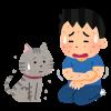 【愕然】猫アレルギーワイが猫を飼う方法wwwwww