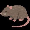 【緊急】ワイの部屋にネズミが溢れかえってるんやが助けてくれ