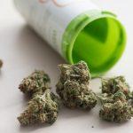 【衝撃】大麻で逮捕の高樹沙耶が爆弾発言wwwwwwww