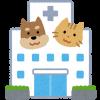 【悲報】猫好きさん、野良猫を動物病院に連れて行く→ 治療費を請求された結果・・・・・