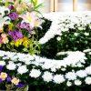【闇】ジャニーさん家族葬、参加できなかった有名人がこちら・・・