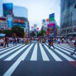 【速報】渋谷のファミマを休店に追い込んだネズミの現在wwwwwww
