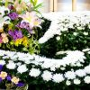 【愕然】 ジャニー喜多川さんお別れの会、意外な参加者が・・・