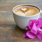 【衝撃】話題の男の娘カフェがこちらwwwwwwww(画像あり)