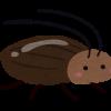 【狂気】うるさい隣人の部屋にゴキブリ放った結果wwwwwwww