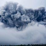 """【悲報】噴火で拡大した西之島、""""ヤツら""""の楽園にwwwwwwww"""