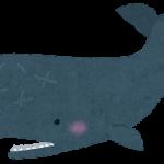 【衝撃】クジラに呑み込まれた男の現在…まじかよこれ・・・